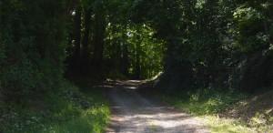 Cherisay-Chemin de la Conille